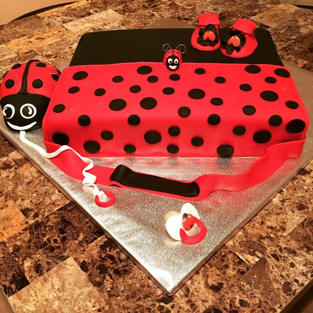 Lady Bug Diaper Bag Baby Shower Cake