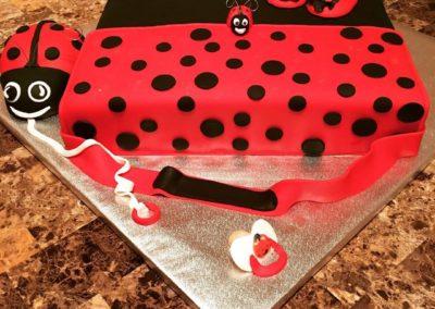 Lady Bug Diaper Bag Baby Shower Cake